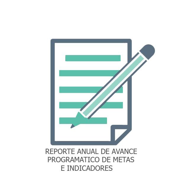 REPORTE ANUAL DE AVANCE PROGRAMATIC